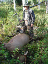 Jerry Brabant Archery Cow Elk