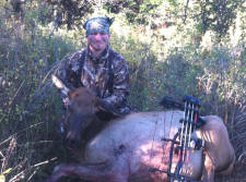 Stephen Workman Bow Season Cow