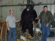 Bear with Curtis and Bill